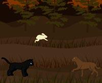 Игры по котам воителям онлайн